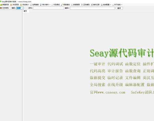 SEAY代码审计系统源码 独家去除后门/排门【去马修复版】