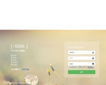 基于Spring+Spring MVC+Mybatis开发ssm网站后台管理系统源码